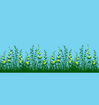 grass and flowers seamless vector image vector image
