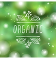 Organic - product label on blurred background vector image vector image