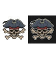 Pirate Skull and Crossbones vector image vector image