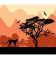 wild african animals vector image