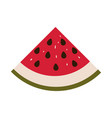 colorful silhouette with watermelon fruit cut and vector image