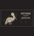 silhouette pelican in grunge design style animal vector image vector image