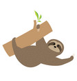 sloth tree branch cute cartoon character fluffy vector image