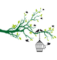Tree branch with birds and birdcage vector image vector image