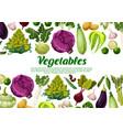 vegetables and vegetarian veggie poster vector image vector image