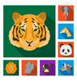 Wild animal flat icons in set collection for
