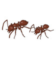 3d brown ants on white background vector image vector image