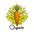 Organic food icon stock