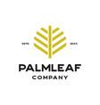 palm leaf luxury logo vector image