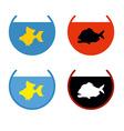 Set of aquarium fish Goldfish in an aquarium Fish vector image