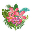 tropical and exotics flowers and leafs vector image vector image