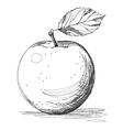 apple graphic on white background vector image