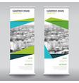 roll up business brochure flyer banner design vector image