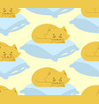 cat sleeps on pillow seamless pattern sleeping vector image vector image
