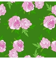 pink flowers on green background vector image vector image
