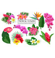 set tropical flowers vector image vector image