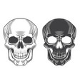 skull monochrome isolated on white vector image vector image