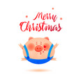 the year of the pig cute smiling little pig vector image vector image