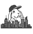 Urban Rabbit vector image vector image