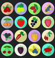 icons of fruits and berries in a set on a dark vector image