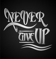 Never Give Up Typography vector image vector image