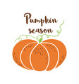 pumpkin season logo pumpkin icon hand drawn autumn vector image vector image