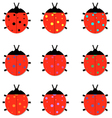 Set of colorful Ladybird vector image vector image