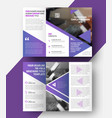 template of a fold brochure vector image vector image