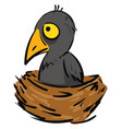 cartoon a small grey crow in a brown nest vector image vector image