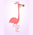 cool carton pink flamingo bird vector image vector image