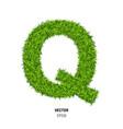 green grass texture vector image vector image