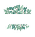 horizontal frame with flat eucalyptus and place vector image vector image