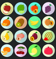 icons of fruit in a set on a dark background vector image vector image