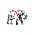 logotype elephant vector image vector image