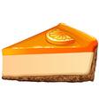 Orange cheesecake with jam vector image vector image