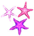 set of neon cartoon of starfishes vector image