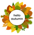 autumn leaves in circle with hello autumn vector image vector image