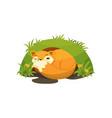 cute fox sleeping in a den on vector image