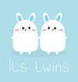 its twins two boys cute twin bunny rabbit set vector image vector image