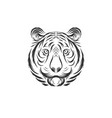 tiger face design vector image
