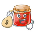 with money bag character homemade strawberry vector image vector image