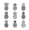 abstract pineapple icons set vector image vector image