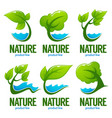 collection of decorative green leaves trees and vector image vector image