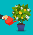 growing money tree vector image vector image