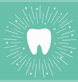 healthy white tooth icon round line circle vector image vector image