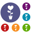heart flower in a pot icons set vector image vector image