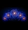 holiday festival blue and gold firework vector image vector image