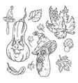 jack o lantern halloween set nature vector image
