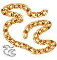 Shiny precious gold chain vector image