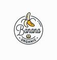banana logo round linear logo peeled banana vector image vector image